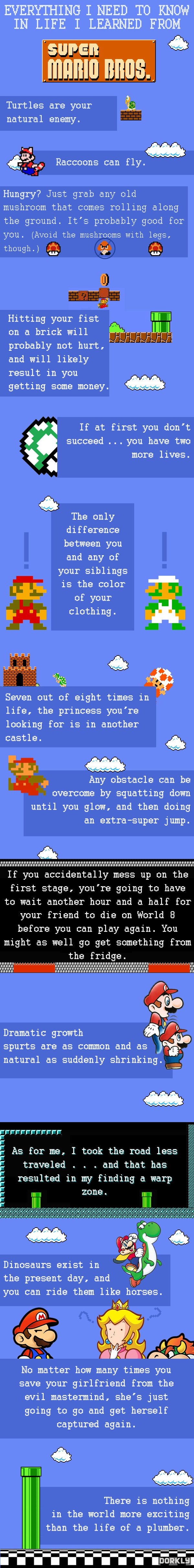 unlikely lifes lessons learned in super mario The following are 10 terrible but arguably true life lessons that i've gleaned from the classic video game super mario brothers (and a little from its sequels) 1 the more money you make, the longer you get to live every time you get 100 coins in super mario, you literally get another life that.