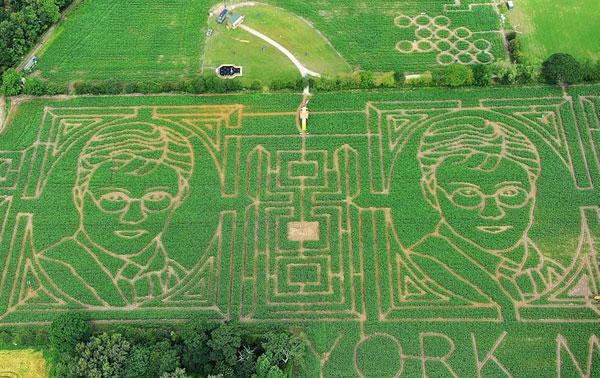 Harry Potter Corn Maze