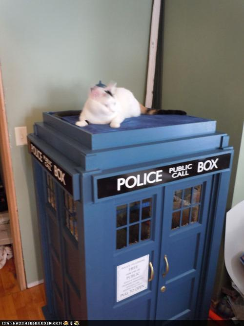 Doctor Who TARDIS Cat Playhouse
