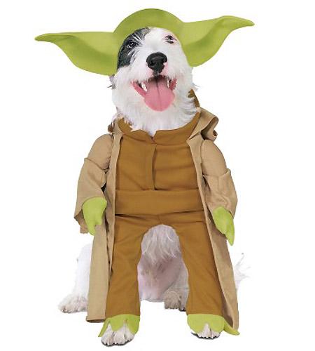 Yoda Dog Cosplay
