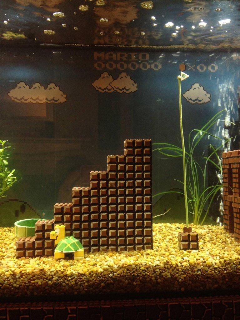 Super Mario Bros Aquarium