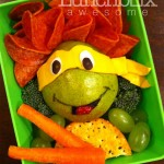 Teenage Mutant Ninja Turtle Lunch [pic]