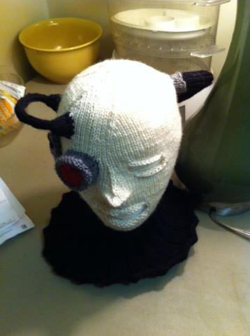 Knitted Borg Hat