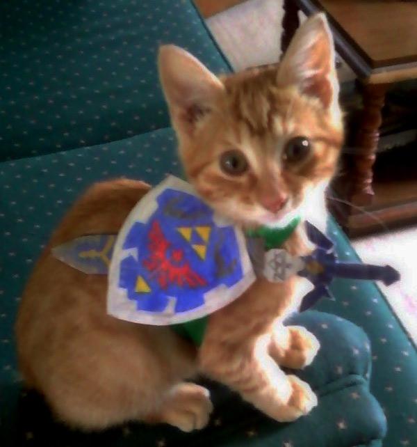 Legend of Zelda Kitten Link Cosplay