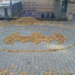 Batman Logo Made From Leaves