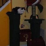 Super Mario Bros Cat Tree [pic]